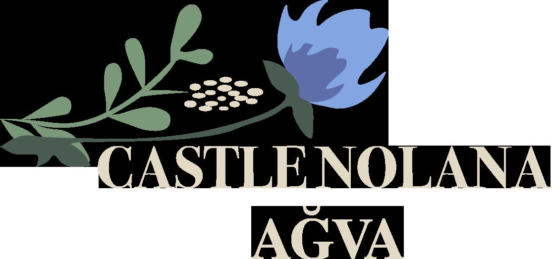 Castle Nolana Ağva Butik Otel